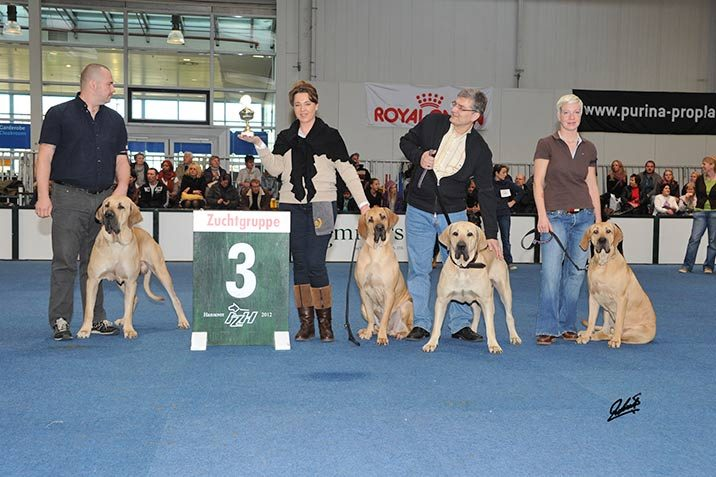 Hundeausstellung Hannover