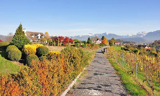 Herbsturlaub mit Hund in der Schweiz