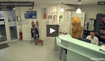 Überraschung: Menschen in Käfigen im Tierheim