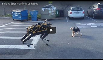 Hund gegen Maschine: Fido vs. Google-Roboterhund