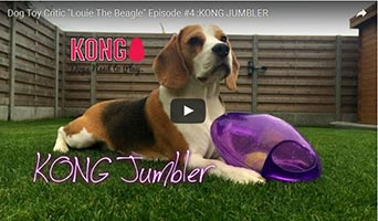 Kong Jumbler- Spaß für Hunde
