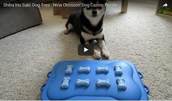 Nina Ottosson Dog Casino
