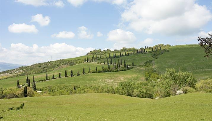 Naturlandschaft in der Toskana